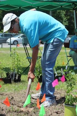 Susan at Achilles planting